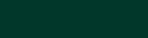 Cepas y Vinos logo