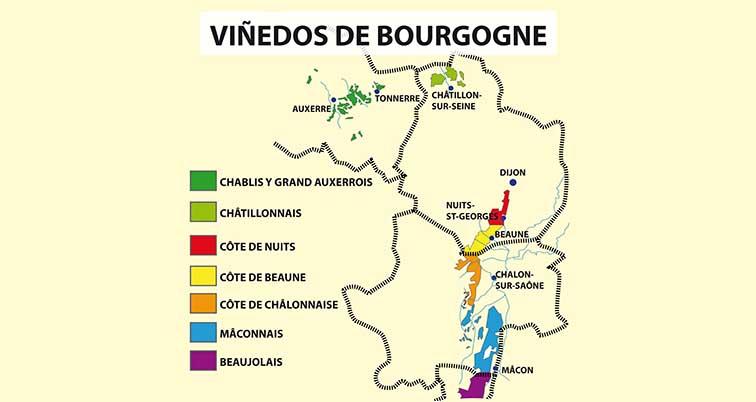 Viñedos Bourgogne.ai