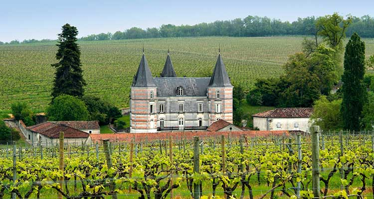 World___France_Castle_in_the_province_of_Champagne__France_073365_